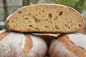 Bread, glorious bread!